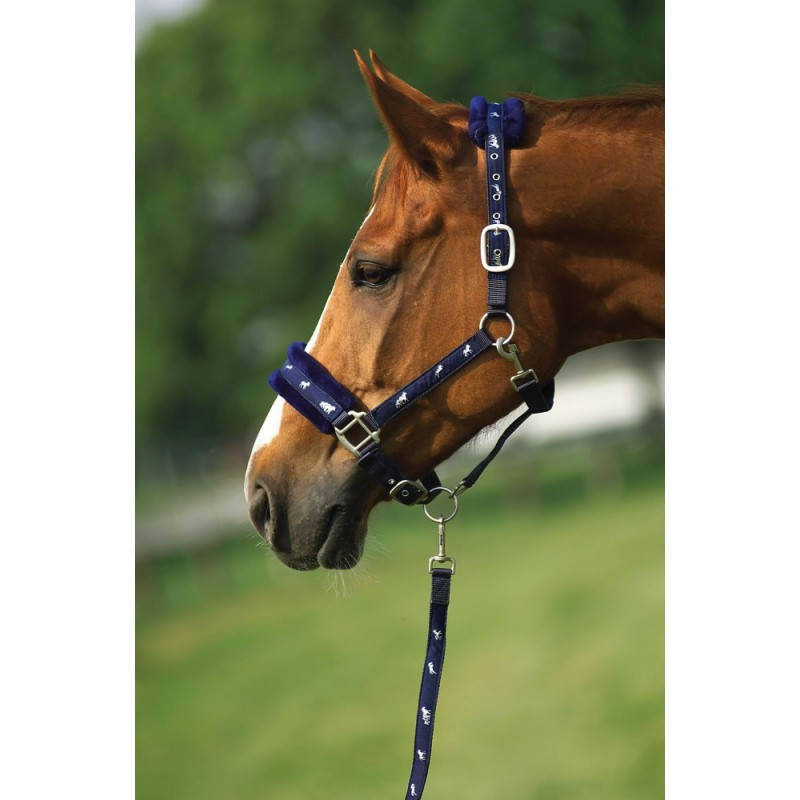 Norton - Synthetic fleece lined nylon headcollar + rope set