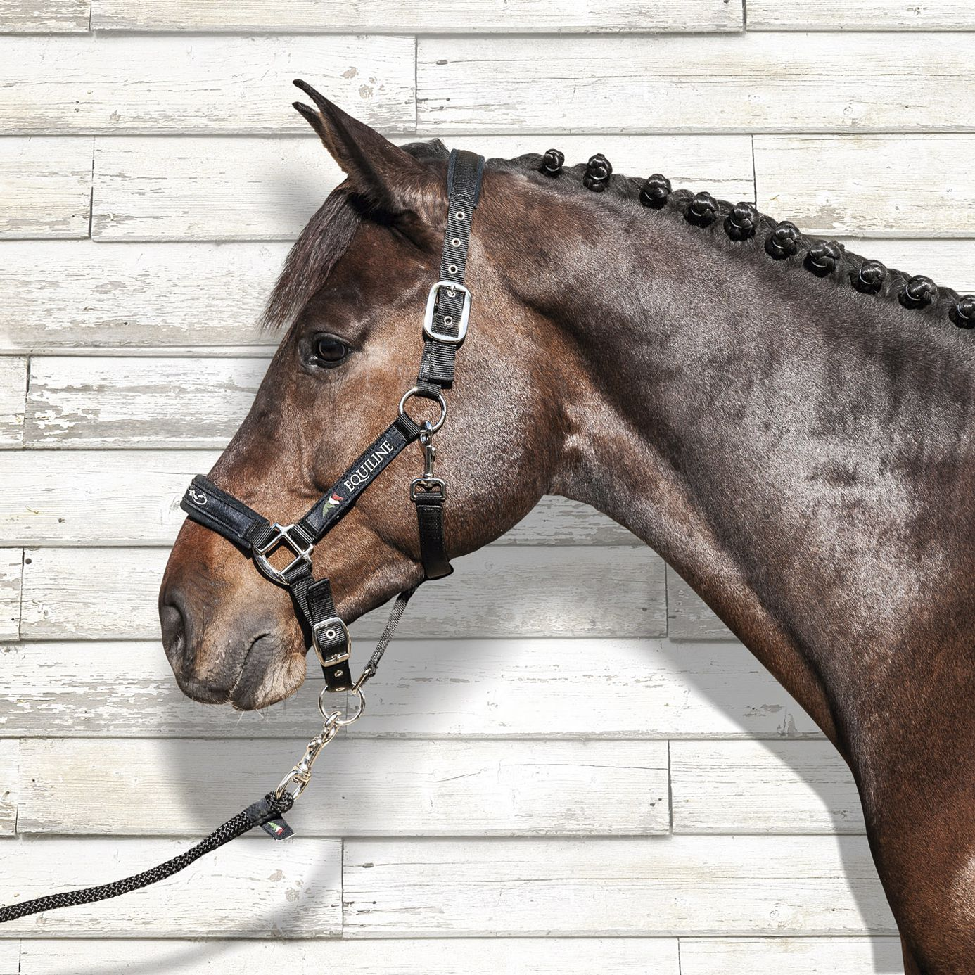 Equiline - Headcollar and Lead Rope